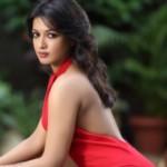 Profile picture of Nandini Divekar